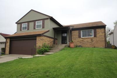 Vernon Hills Single Family Home For Sale: 202 Albert Drive