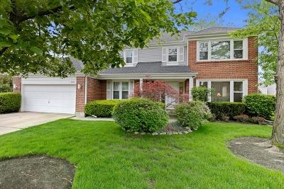 Buffalo Grove Single Family Home For Sale: 2930 Bayberry Drive