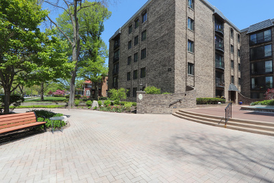 River Forest Condo/Townhouse Price Change: 1009 Bonnie Brae Place #5B