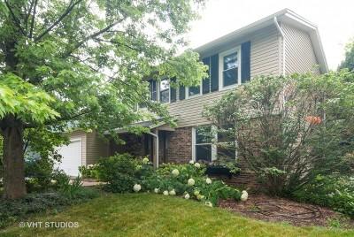 Aurora Single Family Home New: 1585 Brook Lane