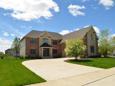Naperville Single Family Home For Sale: 4212 Winterberry Avenue