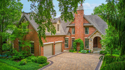 Naperville Single Family Home For Sale: 650 North Loomis Street