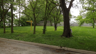 Joliet Residential Lots & Land For Sale: 2613 Commonwealth Avenue