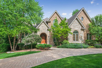 Palos Park Single Family Home For Sale: 12415 South 81st Avenue