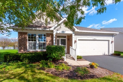Romeoville Single Family Home For Sale: 663 South Mecosta Lane