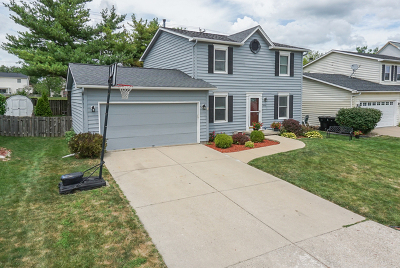 Single Family Home For Sale: 504 Carriage Hills Road