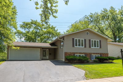 Woodridge Single Family Home For Sale: 6537 Winston Drive