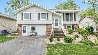 Frankfort Single Family Home For Sale: 7709 West Sterling Drive