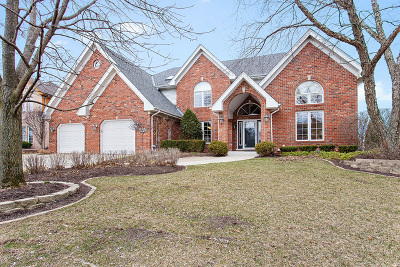 Orland Park Single Family Home For Sale: 16844 Steeplechase Parkway