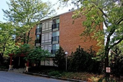 Lisle Rental For Rent: 1833 Four Lakes Avenue #2M