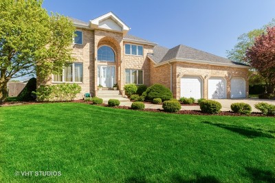 Mokena Single Family Home For Sale: 10060 Cromwell Lane