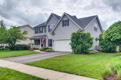 Oswego Single Family Home Price Change: 319 Mustang Drive