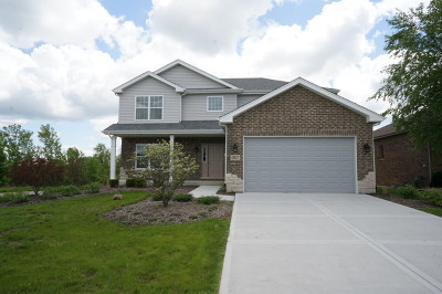 Lockport Single Family Home For Sale: 15827 Aster Drive