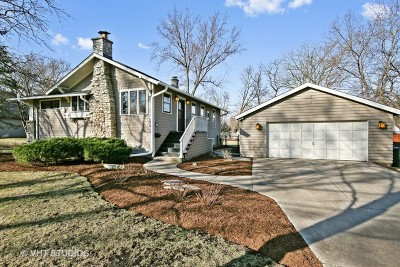 Glen Ellyn Single Family Home For Sale: 254 Traver Avenue