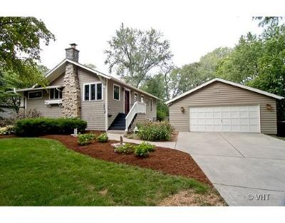 Du Page County Rental Re-Activated: 254 Traver Avenue