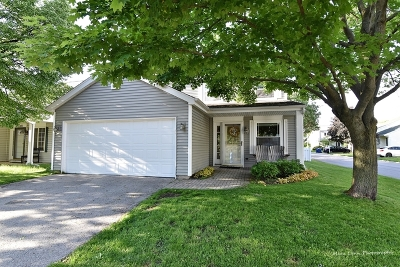Lisle Single Family Home For Sale: 6416 Parksleg Court