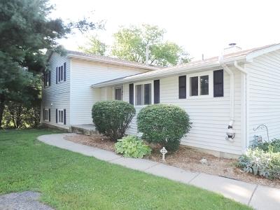 Elburn Multi Family Home For Sale: 439 1/2 West Pierce Street