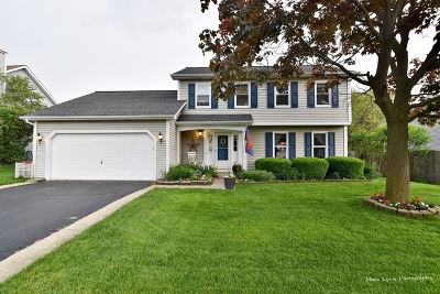South Elgin Single Family Home Re-Activated: 526 Independence Avenue
