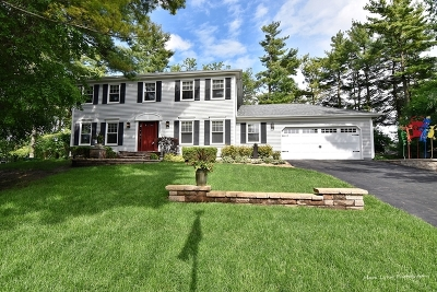 St. Charles Single Family Home For Sale: 3n225 Loblolly Lane