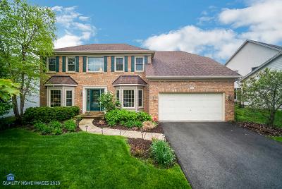 Aurora Single Family Home For Sale: 745 Kendridge Court