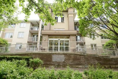 Oak Lawn Condo/Townhouse For Sale: 10700 South Washington Street #104