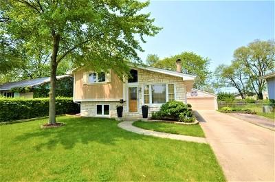 Streamwood Single Family Home For Sale: 414 Audubon Road
