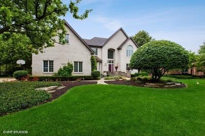 Shorewood Single Family Home For Sale: 24547 West Park River Lane