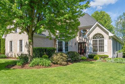 Sugar Grove Single Family Home Contingent: 988 Jennifer Court