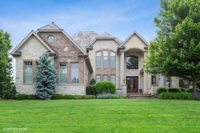 Burr Ridge Single Family Home For Sale: 8301 Fars Cove