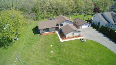 Lake Zurich Single Family Home For Sale: 1230 Honey Lake Road