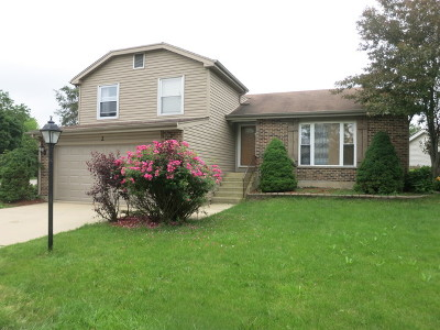Streamwood Single Family Home For Sale: 2 Woodbury Court
