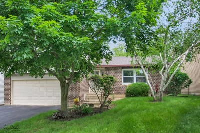 Bartlett Single Family Home Contingent: 237 South Park Place Drive