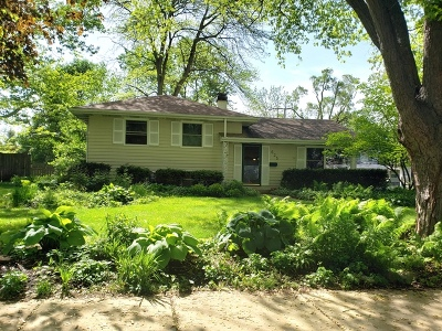 Du Page County Single Family Home For Sale: 635 South Sleight Street