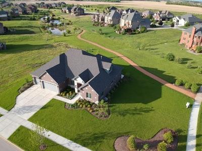 Homer Glen Single Family Home For Sale: 15709 Jeanne Lane