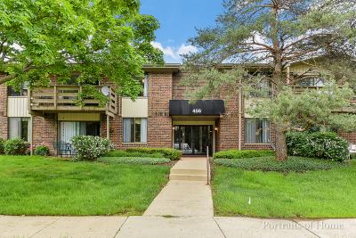 Glen Ellyn Condo/Townhouse For Sale: 456 Raintree Court #2A