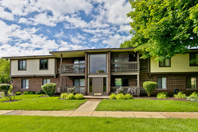 Crystal Lake Condo/Townhouse Contingent: 586 Somerset Lane #7