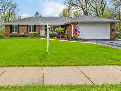 West Chicago  Single Family Home For Sale: 866 East Sterling Avenue
