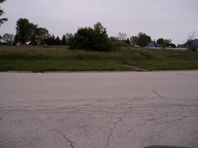 New Lenox Residential Lots & Land For Sale: 22559 South Country Drive
