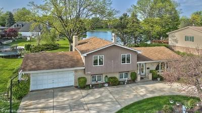 Elk Grove Village Single Family Home For Sale: 750 Winston Drive