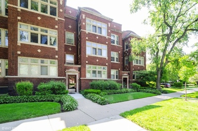 Evanston Condo/Townhouse For Sale: 825 Ridge Avenue #2