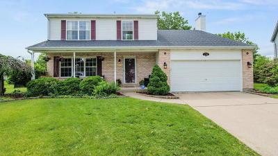Plainfield Single Family Home New: 1216 Laurakriss Court