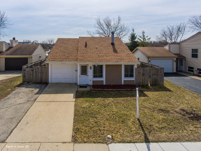 Warrenville Single Family Home For Sale: 30w011 Wembly Drive