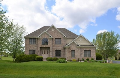 Hampshire Single Family Home For Sale: 15n876 Pheasant Fields Lane