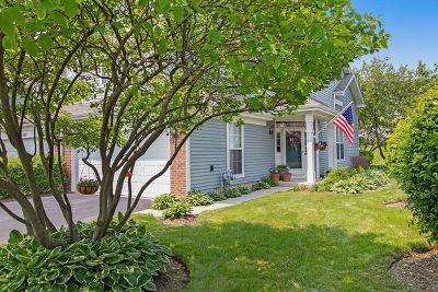 East Dundee Condo/Townhouse Contingent: 511 King Avenue