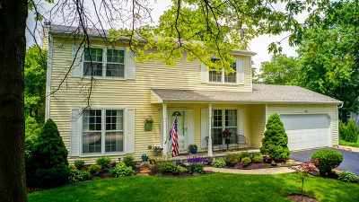 Naperville Single Family Home For Sale: 1333 Culpepper Drive