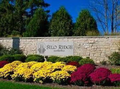 Orland Park Residential Lots & Land For Sale: 69 Silo Ridge Road