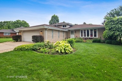 Downers Grove Single Family Home For Sale: 9s185 Florence Avenue
