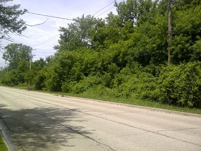 Mc Henry County Residential Lots & Land For Sale: Lot 13 East Brink Street