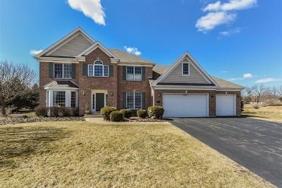 Elgin Single Family Home For Sale: 10n690 Prairie Crossing