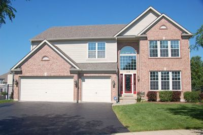 Gilberts Single Family Home For Sale: 218 Glenbrook Court